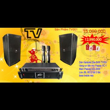 Combo Âm Thanh Karaoke Gia Đình TV001